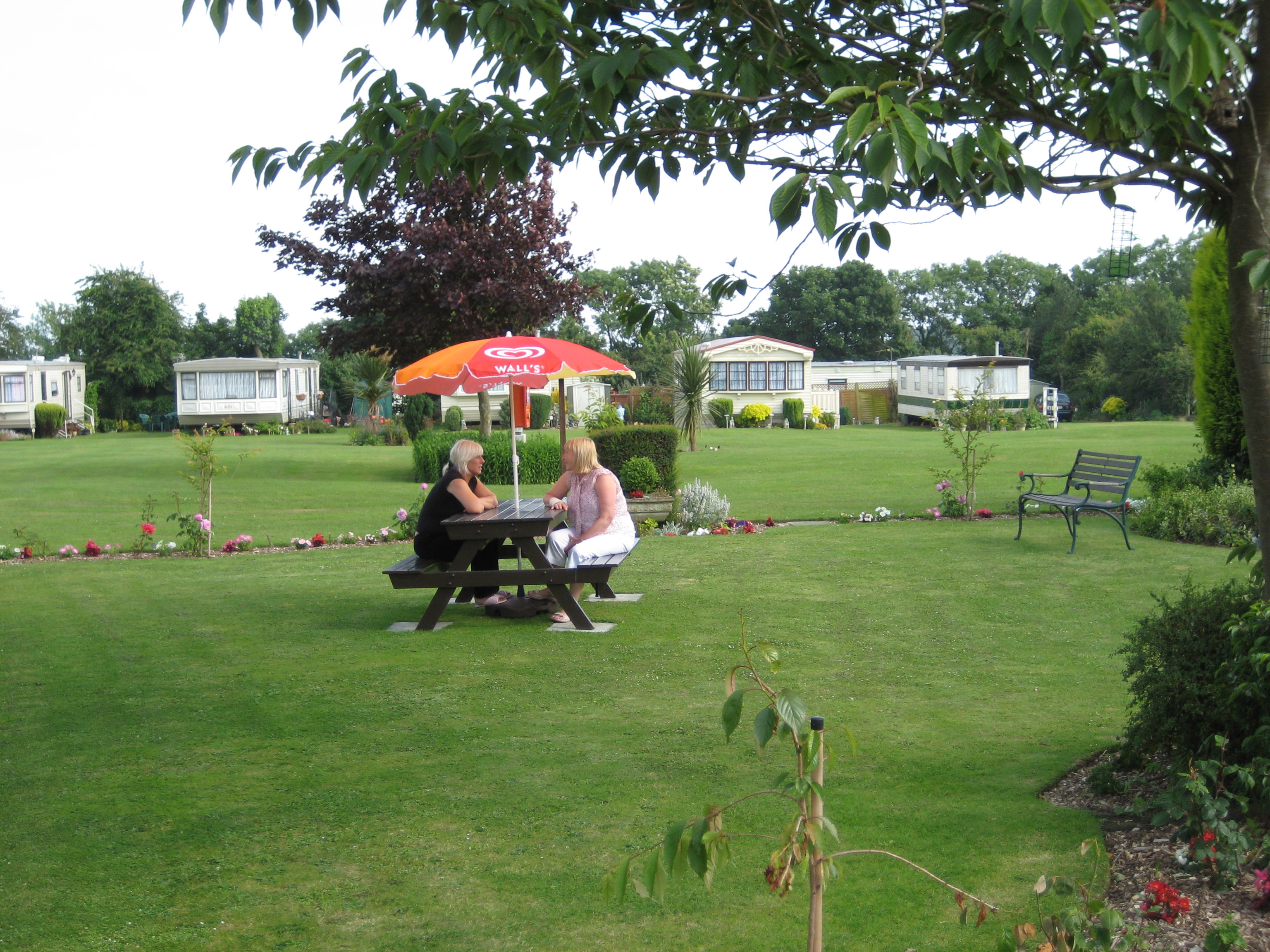 Little Satmer Holiday Park, Camping