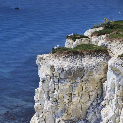 White Cliffs of Dover, Kent, White Cliffs Country